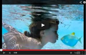 video2013-06-30-2